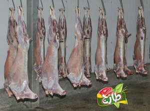 Frozen Halal Mutton (Sheep)