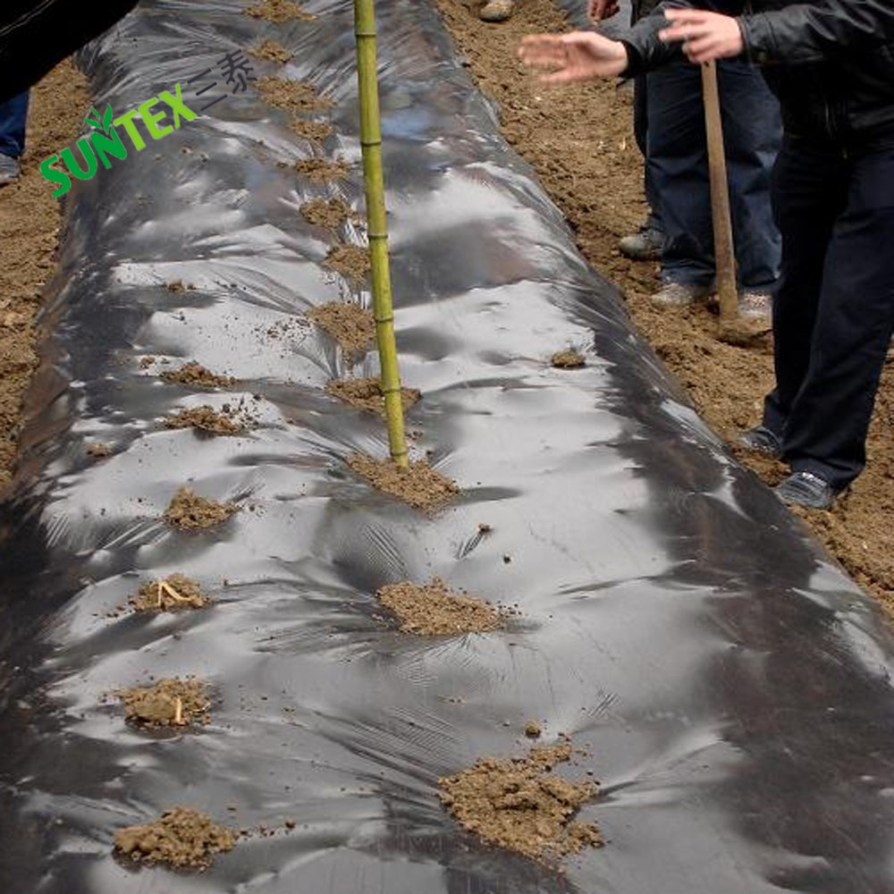 Chinese factory directly sale biodegradable and compostable polyethylene sheet/keep soil moisture plastic mulch film for tomato