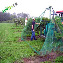 Professional garden netting plant pond anti bird net with low price