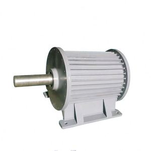 12V-380V AC/DC 100W-100KW 30rpm-6000rpm low rpm wind generator magnet motor free energy