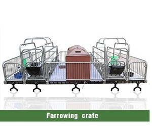 Latest Design Safe Farrowing Crates for Pigs with Factory Price