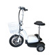 2019 factory price 500w 48V off road zappy 3 wheel electric scooter with CE for old man