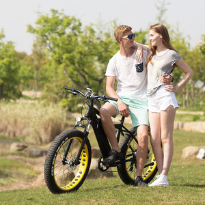China hot sale fat tire 350w 500w 750w electric moped with pedals