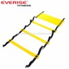 Everise 8/12 Rungs Agility Speed Ladder for Sports ,Soccer, Football Fitness Feet Training