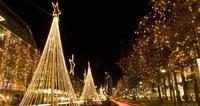 The Solar Energy Led String Light Christmas /festival /hedge ...