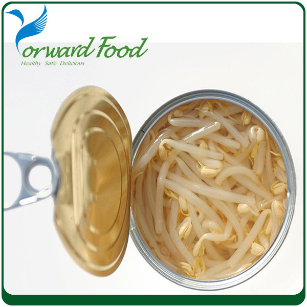 Manufacturer Canned Bean Sprouts