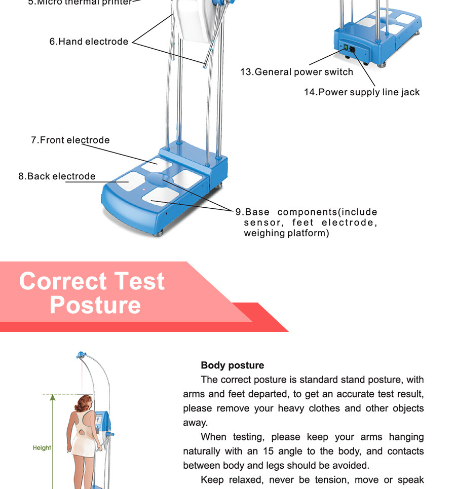 gs6.6 multifunctional concrete human body analyzer type body, Muscles