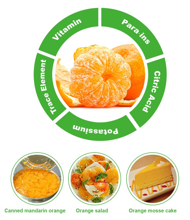 Chinese zhejiang fresh sweet honey mandarin orange