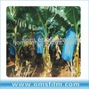 UV Stabilized Banana Bunch Covers Bag For Protection