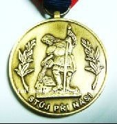 3D custom mental sports medal with ribbon