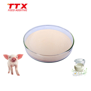 Milk flavor powder improve piglet feed intake