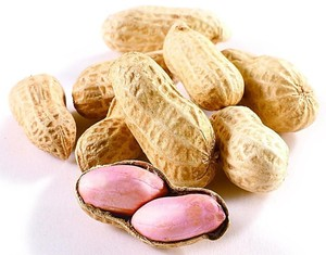 chinese organic peanuts in shell for sale