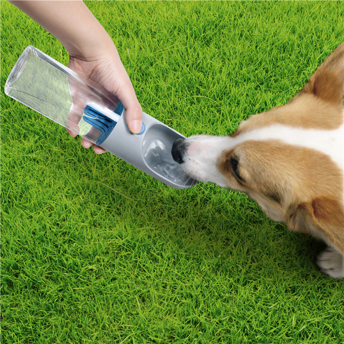 Hang out with your dog taking a dog water bottle to prepare when it is thirsty need water