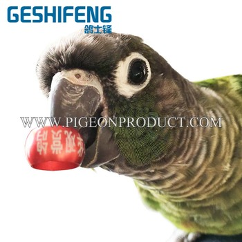 GSF 2-28mm bird leg bands for lovebird ,pigeon ring for sale, View pigeon  ring for sale, GSF Product Details from Dongguan Geshifeng Metal Products