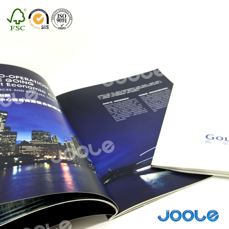 Professional OEM/ODM manufacturer cheap price A3 A4 A5 A6 magazine booklet flyer manual printing