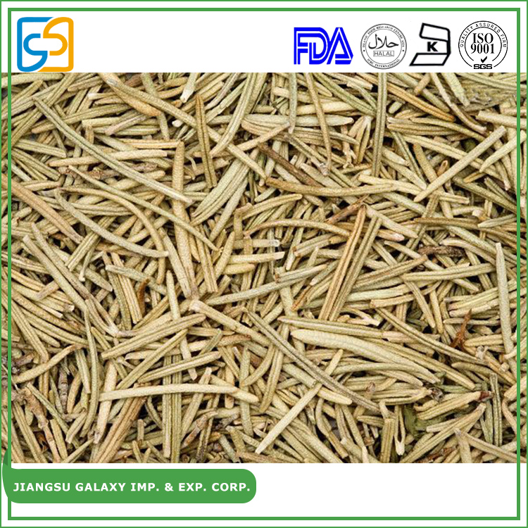 Factory direct sell podwer herb dried rosemary wholesale