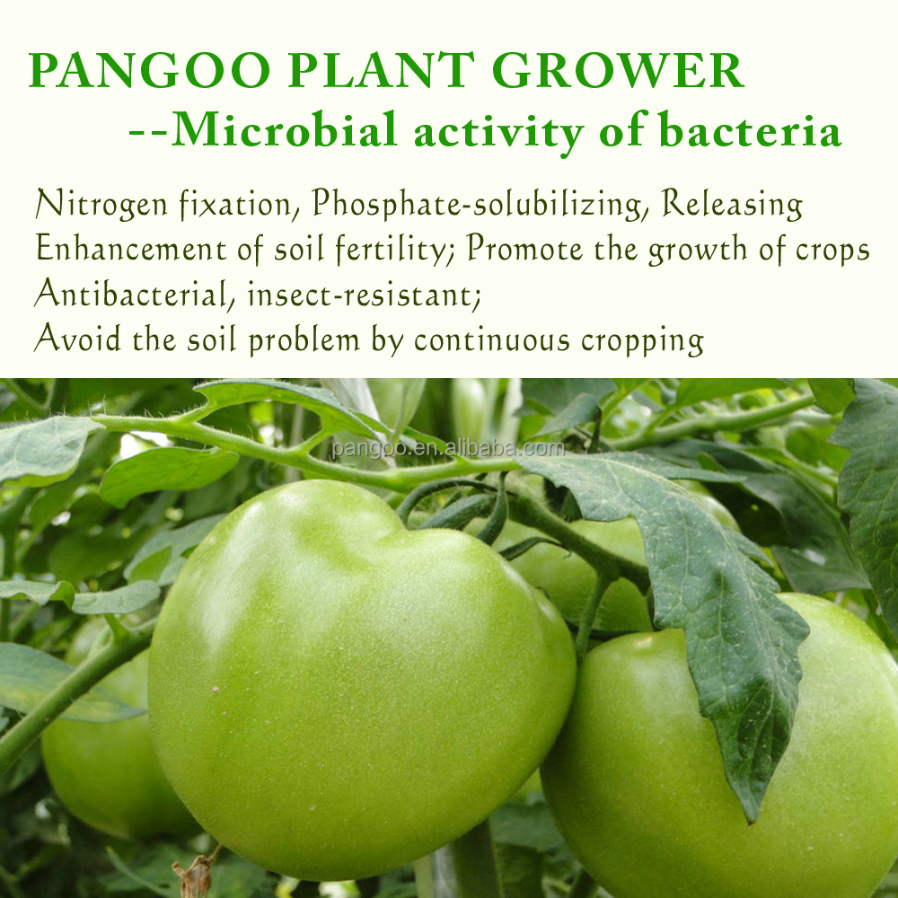 PANGOO PLANT GROWER