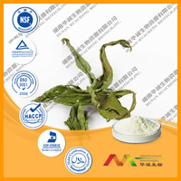 stevia dried leaves extract powder