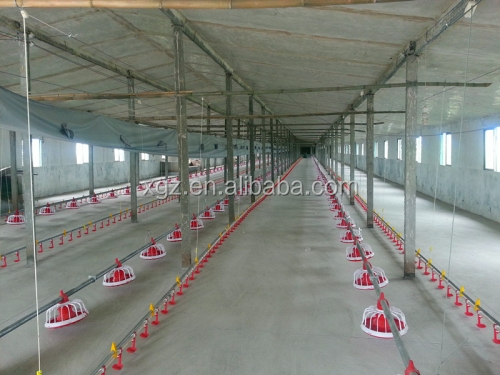 modern advnced automated low price broiler chicken house