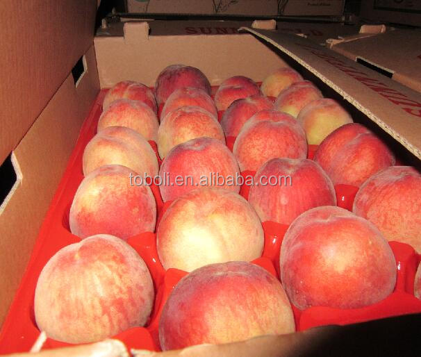 Chinese Fresh peach