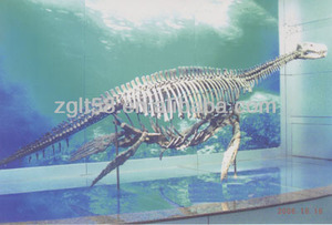 Life size dinosaur skeleton replicas animal skeleton model for sale