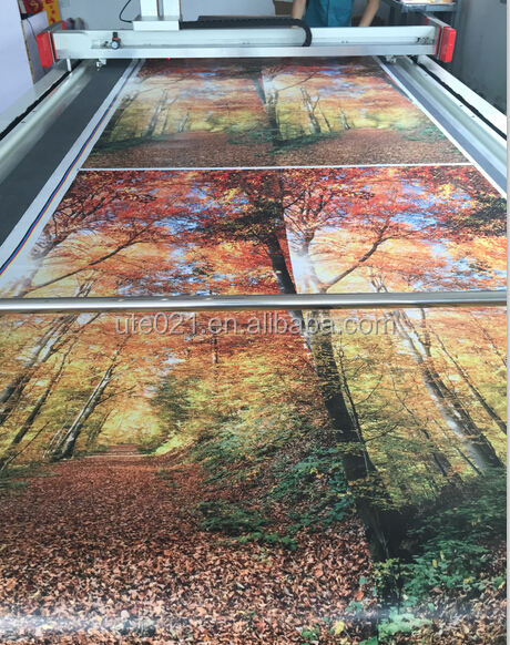 Digital Printed Front Door Stickers Film On Glass Door