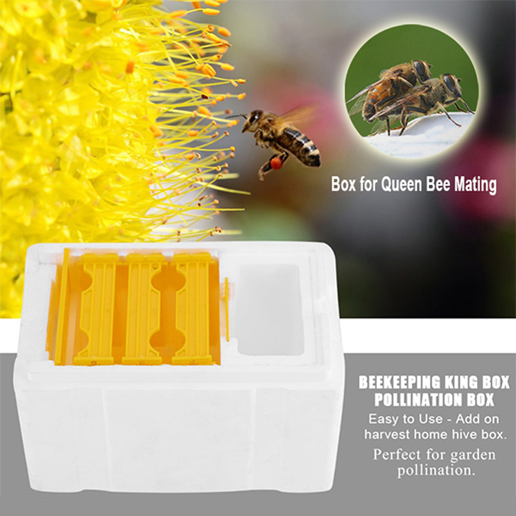 Beekeeping tool equipment  mating box bee breeding box  nuc box polystyrene bee hive styrofoam