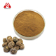 Hot sale maca powder organic maca root extract herb for sex improvement raw maca