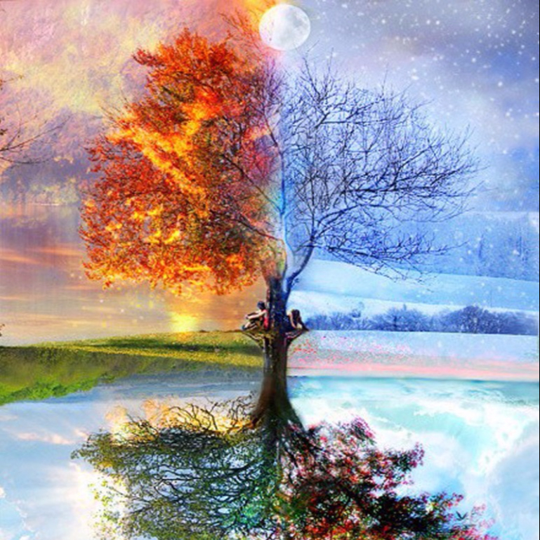 Wall Decoration Nature Scenery Seasons Tree Full Drill Diy Diamond Painting Buy Diamond Painting Kit Diamond Embroidery Painting Diy Art Painting