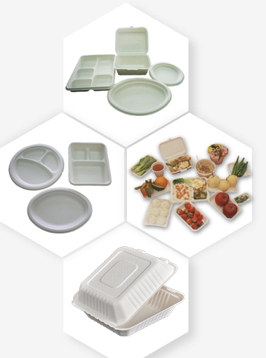 New Design Moulding Bagasse Pulp Paper Plate / Utensils Making Machine