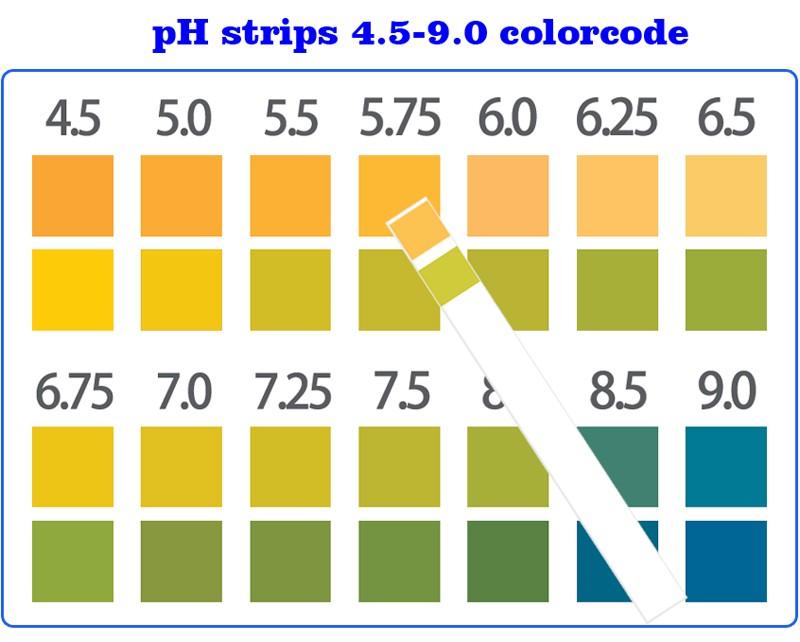 Ph level strips