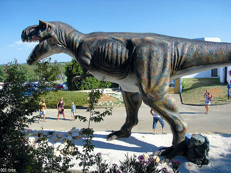 Animatronic life-size T-rex Dinosaur Model for sale