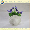 Natural crafts ceramic sea conch shell
