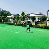 cheap green artificial mat golf putting practice outdoor cricket mats futsal football field price mini golf carpet grass