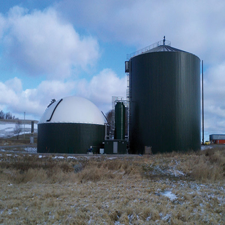 Biogas anaerobic fermentation tank with double membrane gas holder for CHP biogas plant