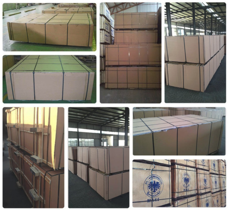 poplar plywood for constuction/building