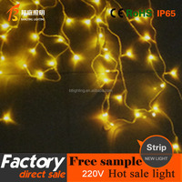 1 Holiday Decoration Christmas Festival Light String Wedding Light ...