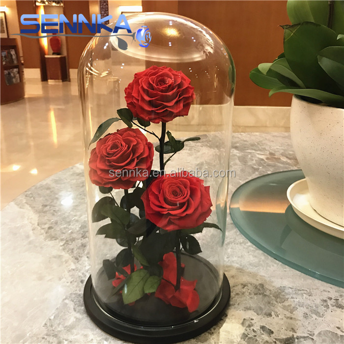 Beauty Beast Design Rose Eternal Preserved In Gl Dome Everlasting Flower