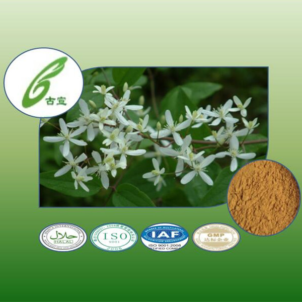 natural herb radix clematidis extract to provide external treatment of plant extracts