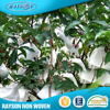 New Trend Product Vegetable Protect Pp Spunbond Agricultural Nonwoven Covers