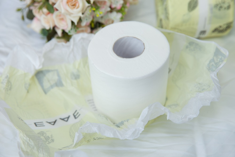 Big roll Dissolvable brand name toilet paper