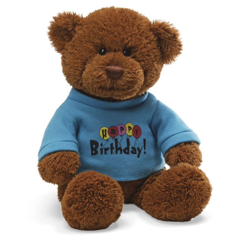 Custom personalized teddy bear with T shirt, plush teddy bear t shirts, plush bear shirt
