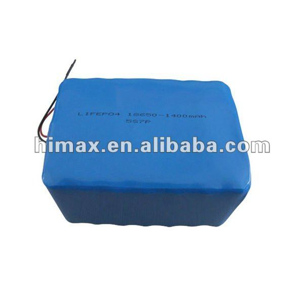 BMS Lifepo4 Battery 48V 40Ah for Electrical Bikes