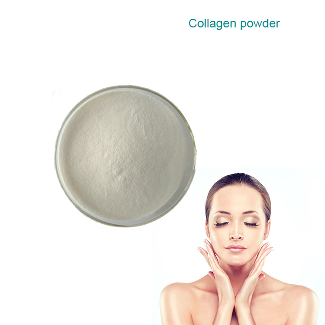 Bulk private label halal certificate hydrolyzed collagen <strong>powder</strong>