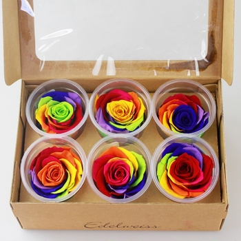 Diy Christmas Gifts Decoration Preserved Flowersecuador Imported ...