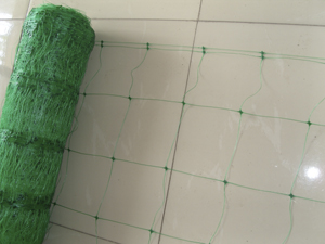 Weight: 8~10g per square meter Plant Support Netting with Plastic Green Climbing