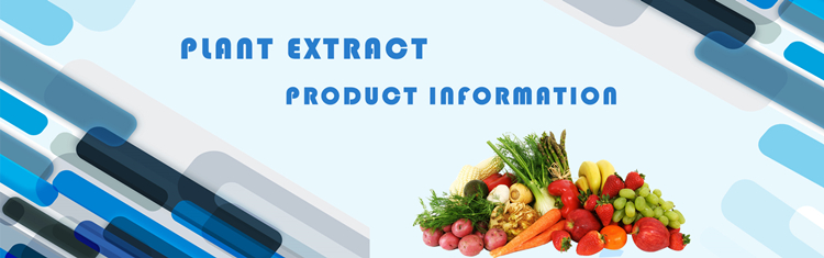 Beste Verkopen Ginseng Wortel Extract 5-80% Ginsenoside (Hplc & Uv) Poeder