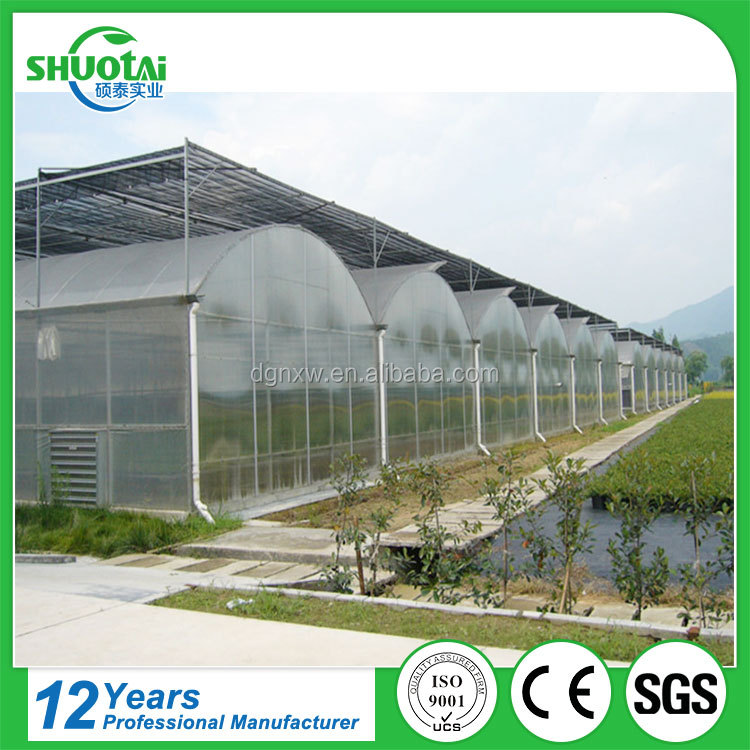 Blowing ldpe agricultural pe protective film scrap biodegradable greenhouse polycarbonate sheet price