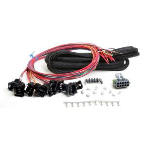 Holley 558-204 Wiring Harness Fuel Injectors Holley EFI Kit