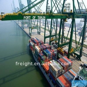 China freight forwarder Ningbo/Tianjin/Qingdao to HAIFA ,Israel